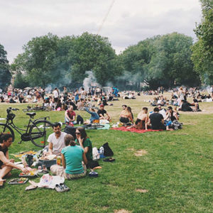 bbq picnic park